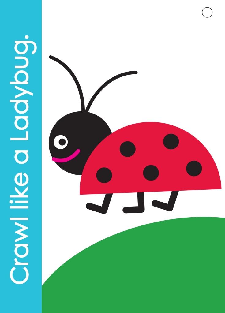 Crawl like a Ladybug