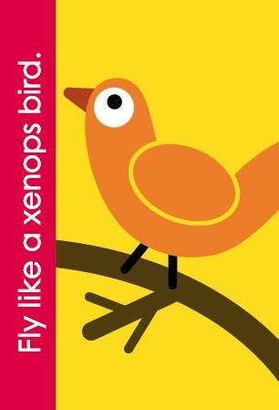 Fundanoodle by Carolina Pad Xenops bird