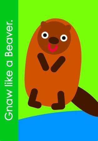 B_Beaver
