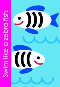 z_zebra fish