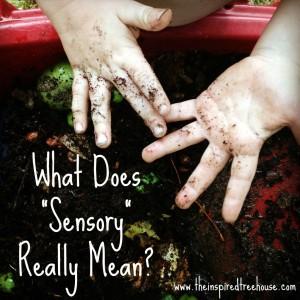 sensory-processing-1024x1024